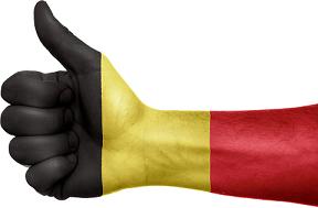 Belgische kentekencheck